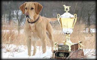 "Duke placing 1st in the NBDCA Player's Championship Guthrie Center IA ""Super Major"" Top Gun Champion in December of 2006"